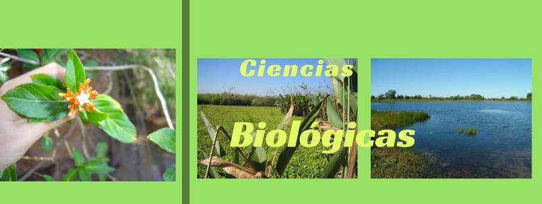 Ciencias Biológicas-portada