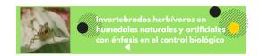 Invertebrados herbívoros en humedales naturales y artificiales con énfasis en el control biológico