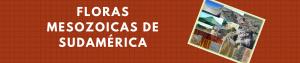 Floras Mesozoicas de Sudamérica